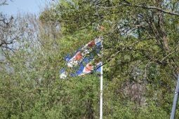 de friese vlag